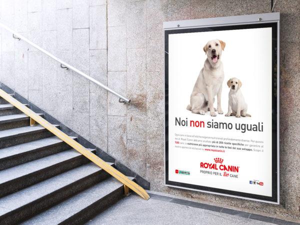 """Campagna """"Noi non siamo uguali"""" Royal Canin Italia"""