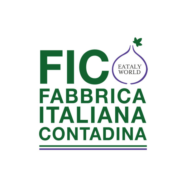 Logo FICO